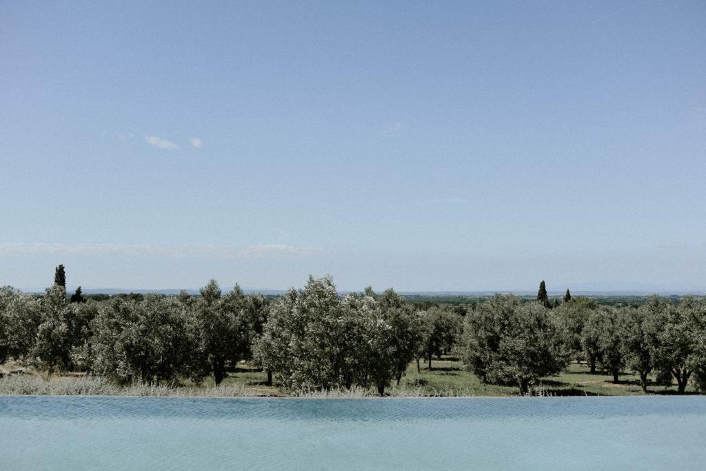 Vue sur des oliviers à l'hotel mas lazuli