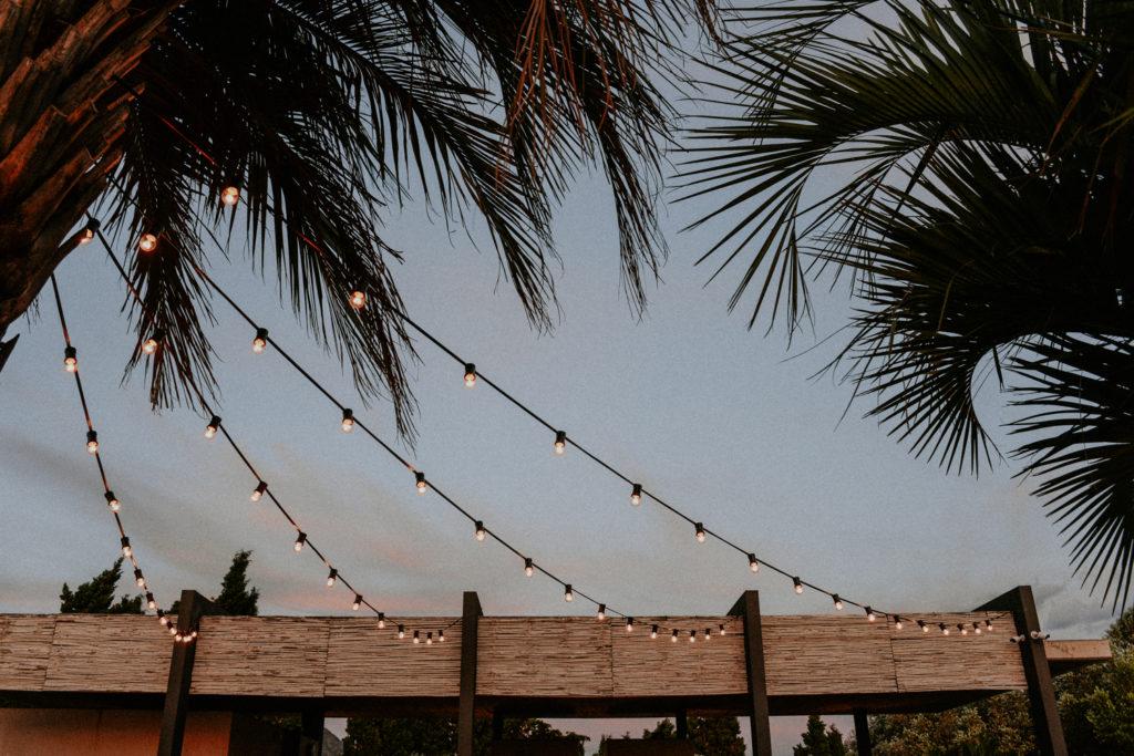 Guirlande guinguette et palmier